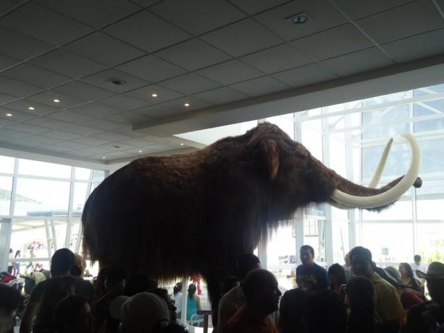 Mammut in der Expo Bicentenario